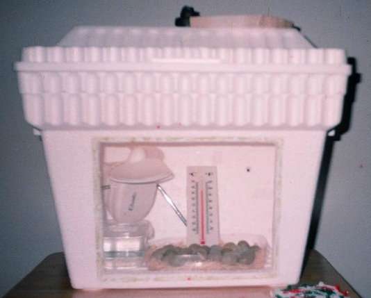homemade cabinet incubator instructions